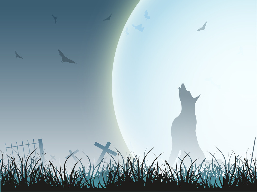Banner Or Background For Halloween Party Night With Silhouette Of Wolf.
