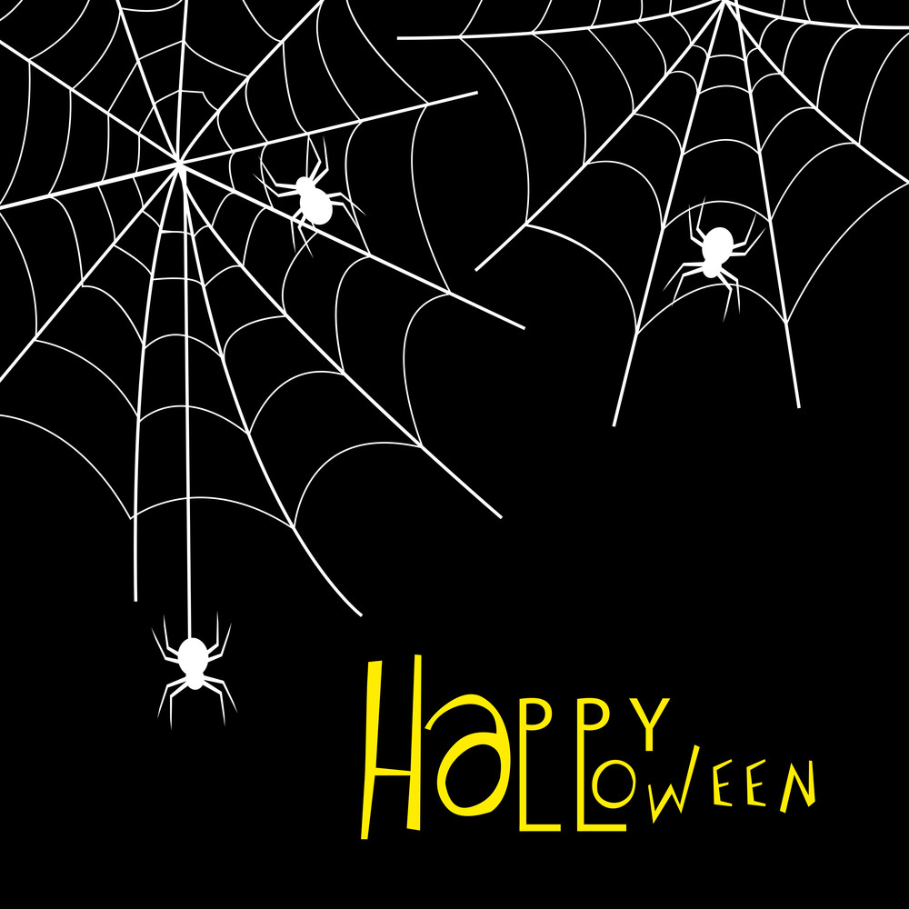 Banner Or Background For Halloween Party Night With Spidernet On Black.