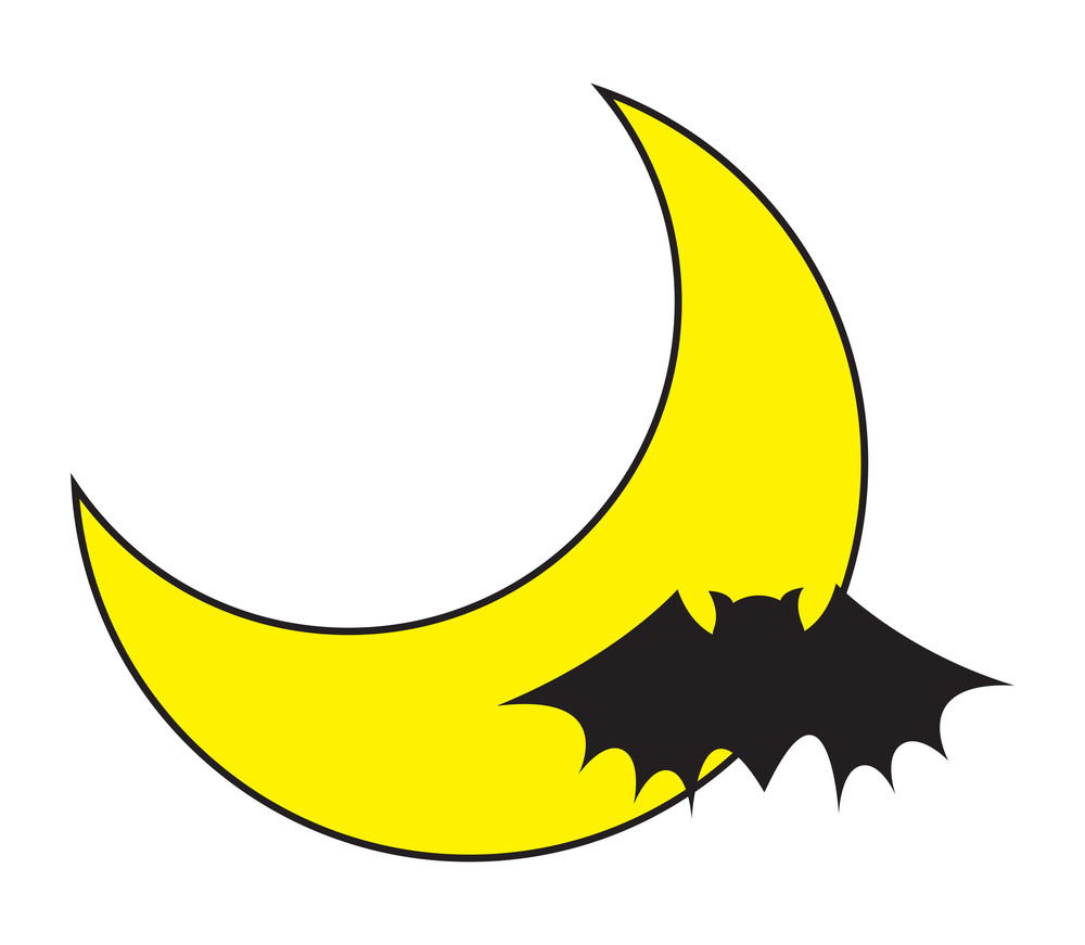 Bat In Moon Light