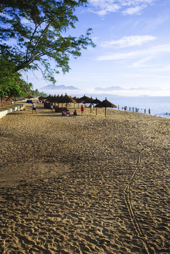 Beach Scene, Tropics, Pacific ocean in morning