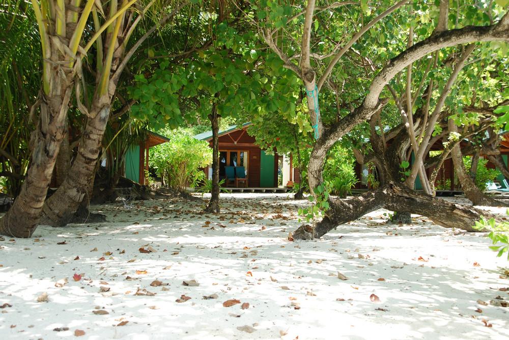 海灘別墅和自然場景在馬爾代夫