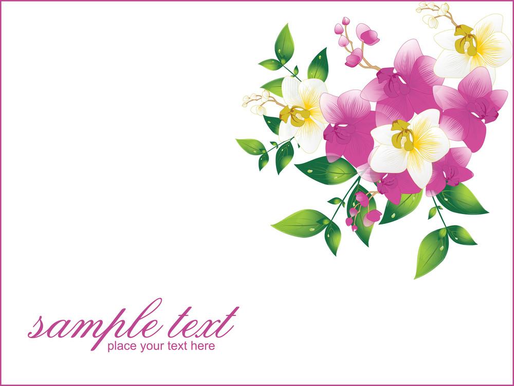 Beautiful Greeting Card Illustration
