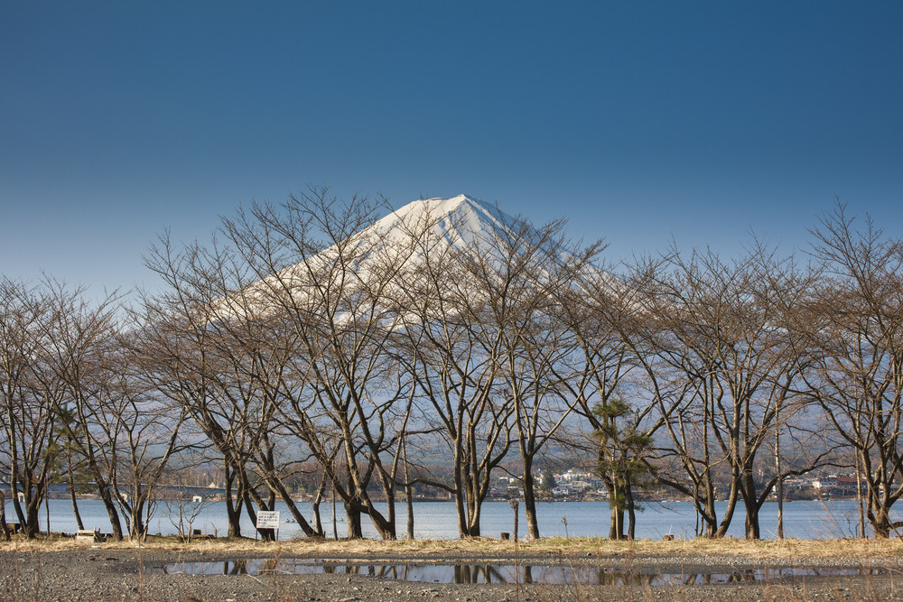 Beautiful Mount Fuji with lake, japan