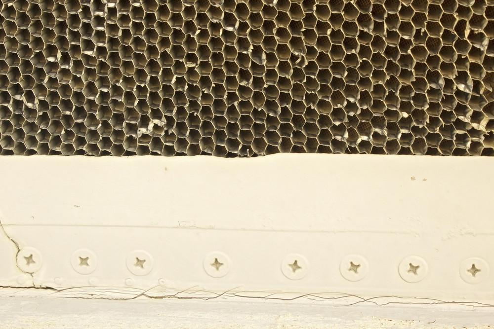 Bee Comb Texture
