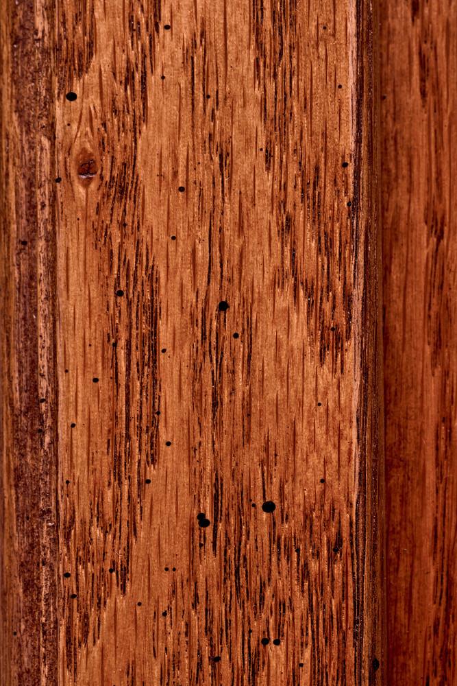 Beetlex Wood