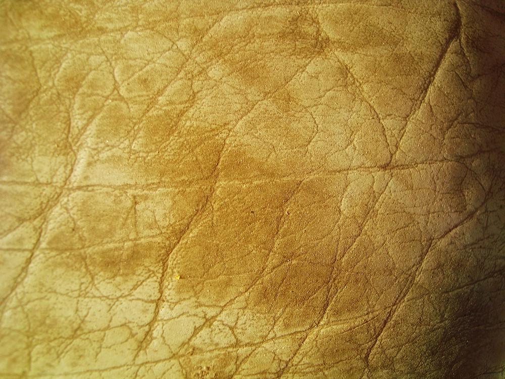 Beige_leather_texture