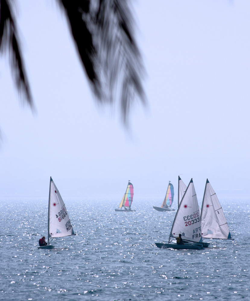 Best Leisure Activity - Sailing Race On The Ocean