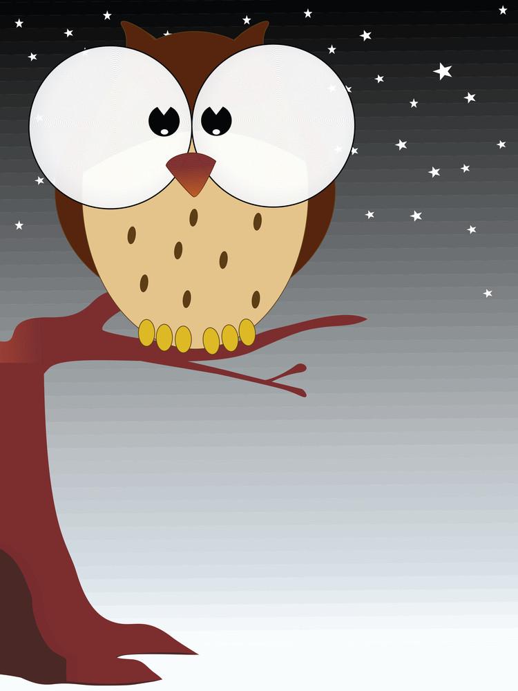 Big Eyes Owl On Branch