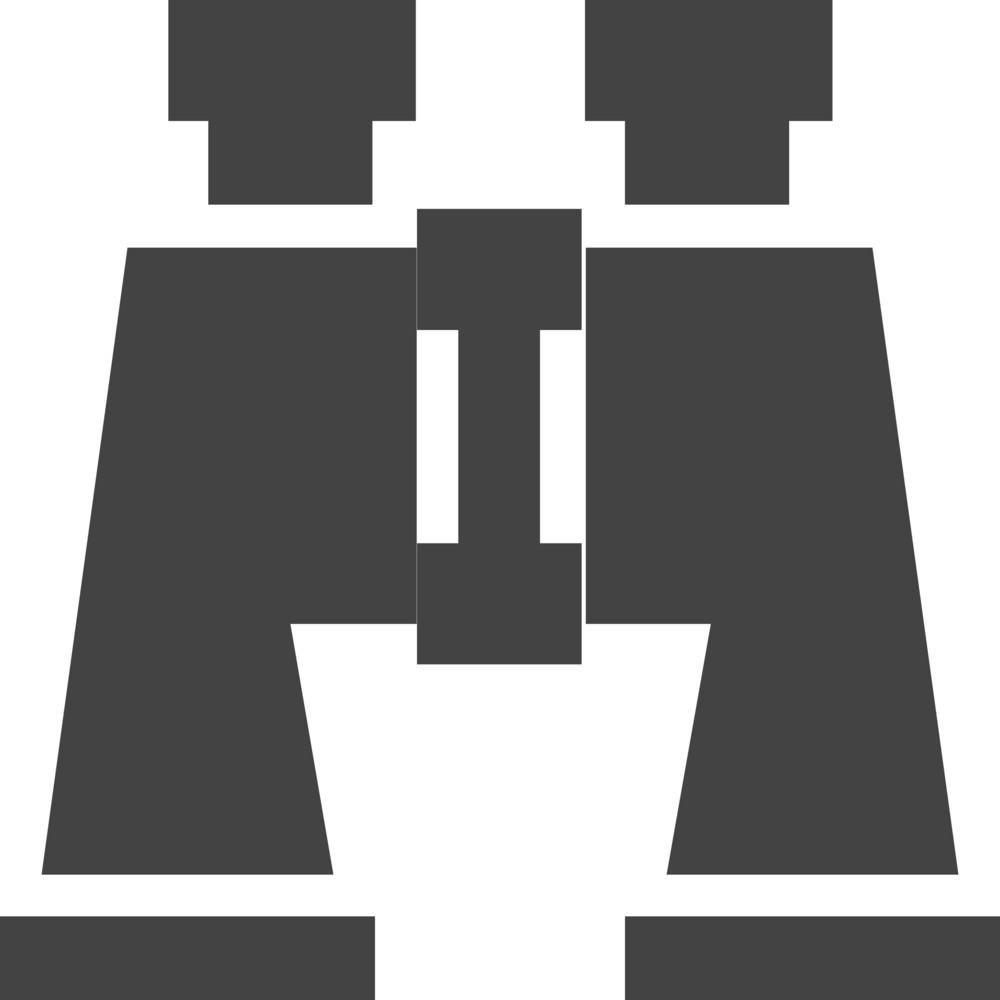 Binoculars 1 Glyph Icon