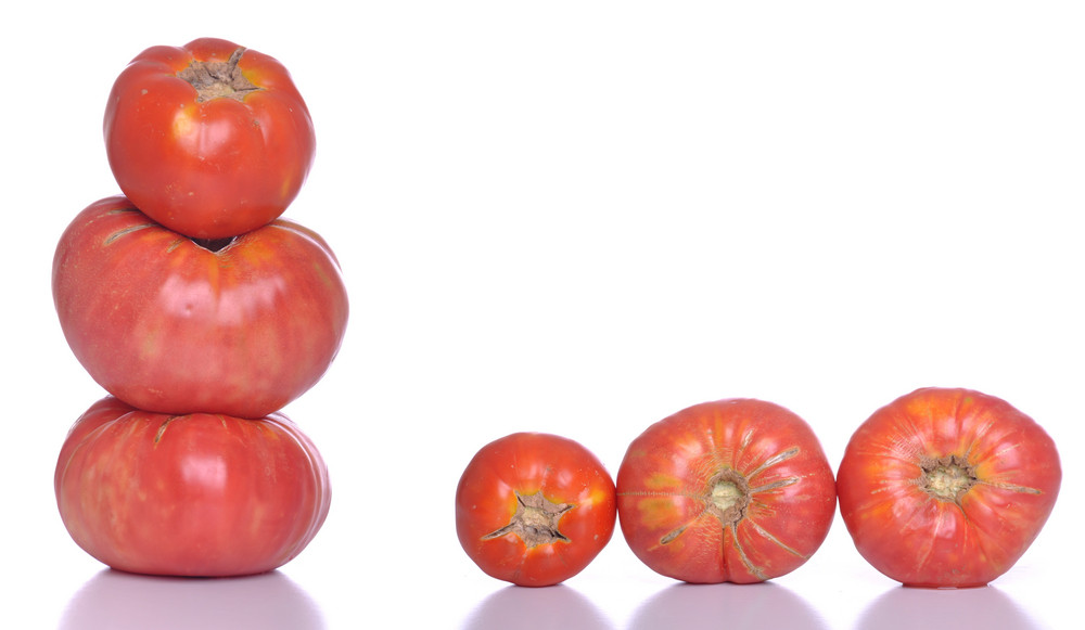 Biological Tomatoes
