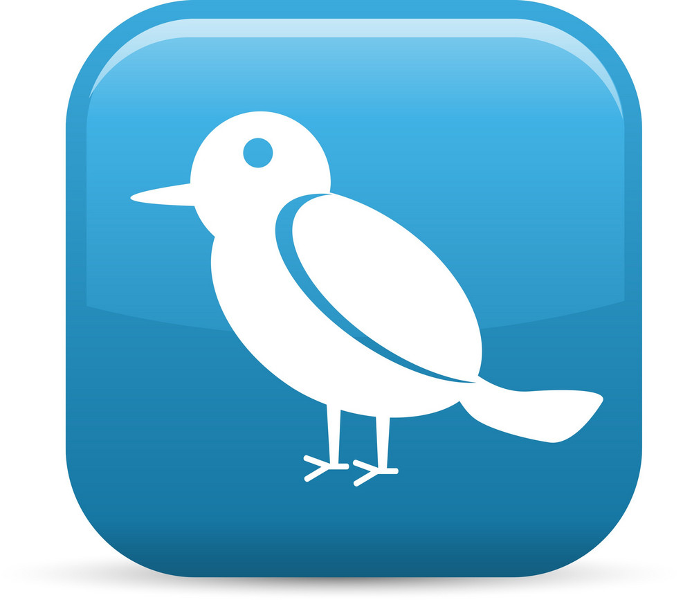Bird Elements Glossy Icon
