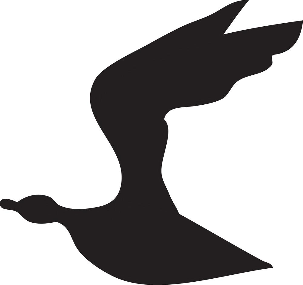 Bird Vector Element