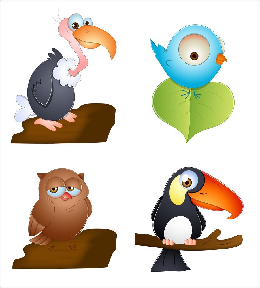 Birds Vectors