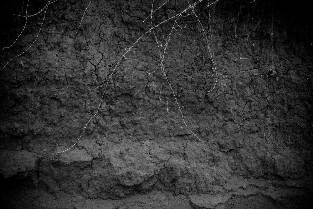 Black And White Riverbanks 3 Texture