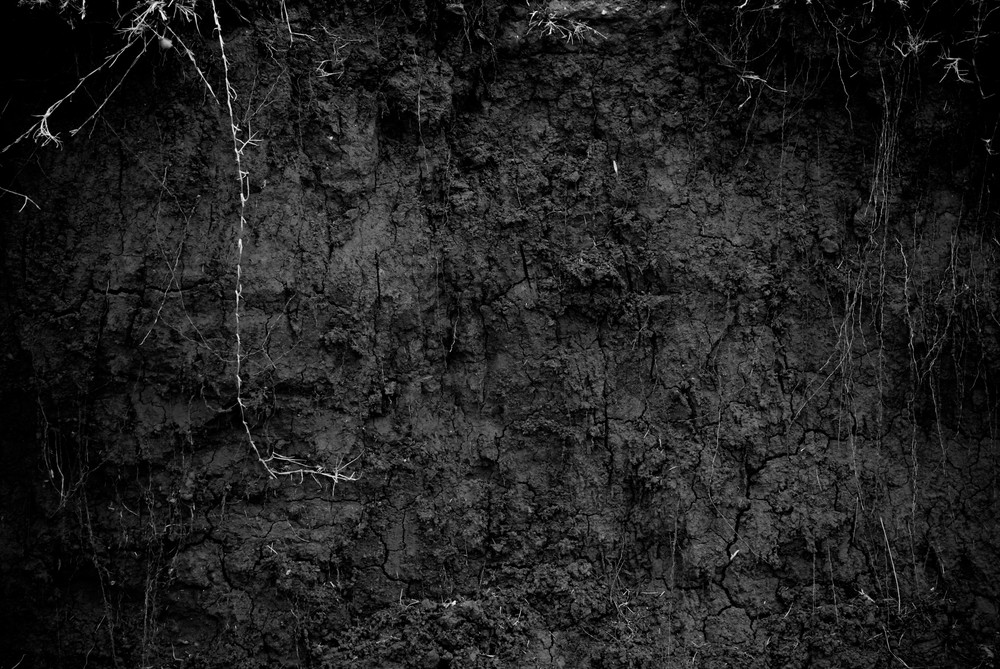 Black And White Riverbanks 5 Texture