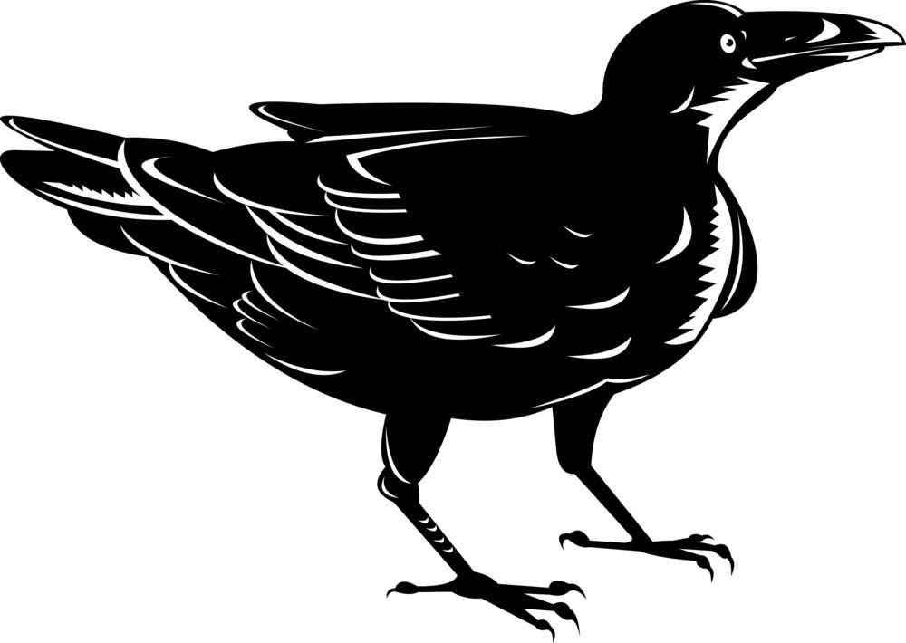 Black Raven Retro