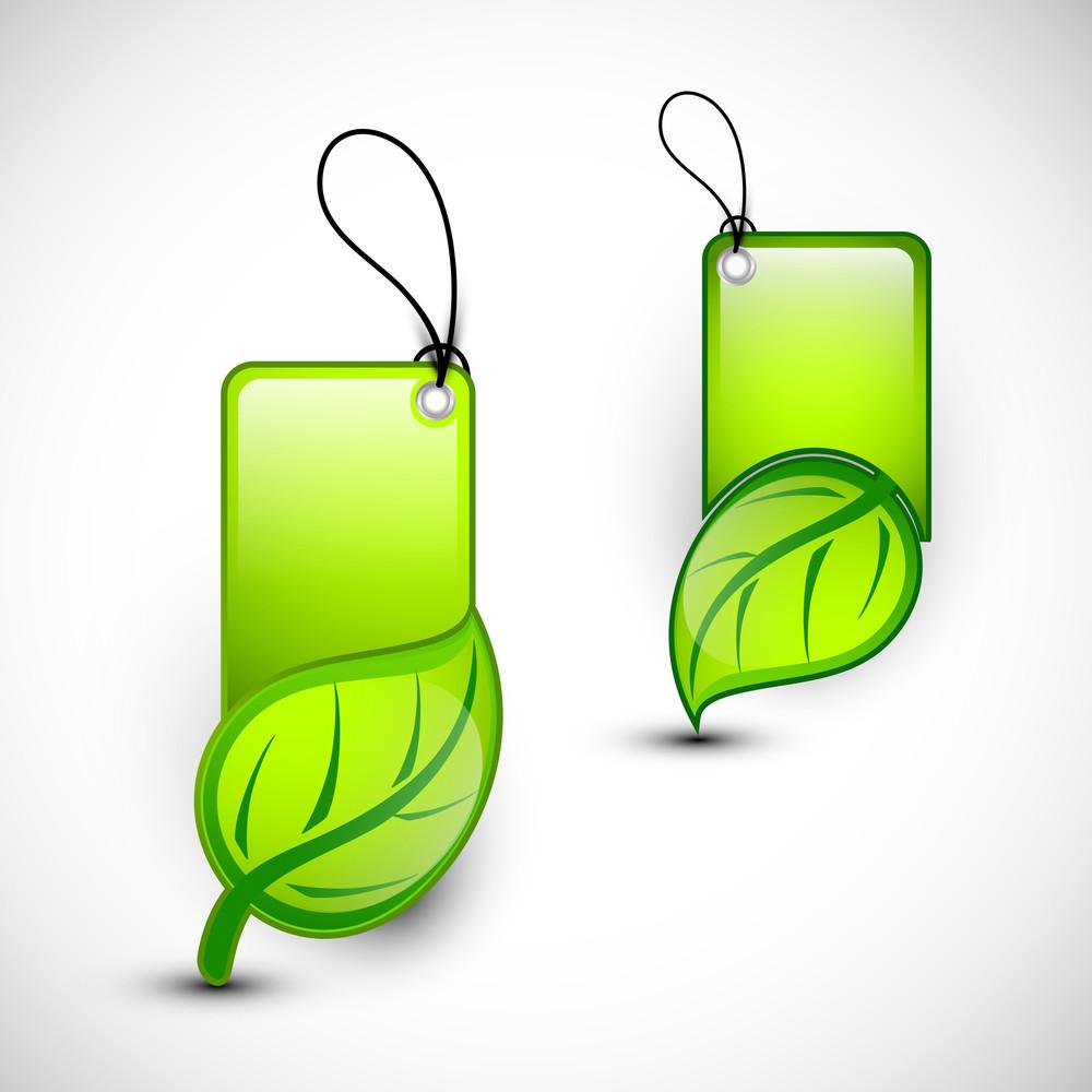 Blank Eco Tags