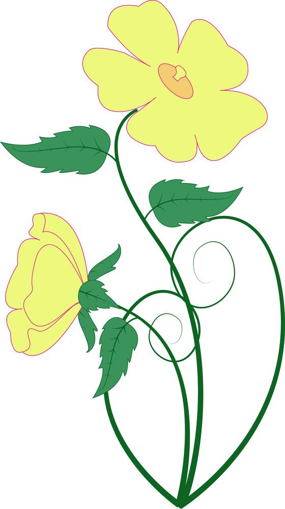 Blossoms Vector