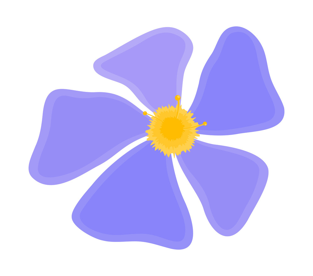 Blue Daisy Drawing