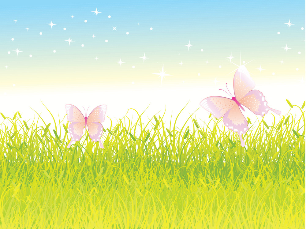 Blue Sky Over A Meadow Flowers