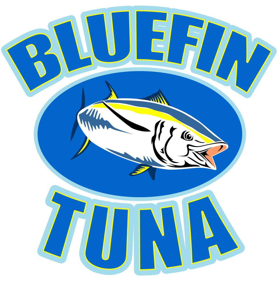 Bluefin Tuna Fish Front