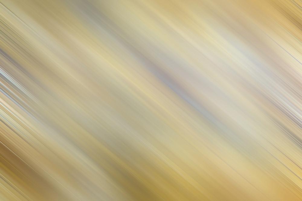 Blurred Nature Backdrop