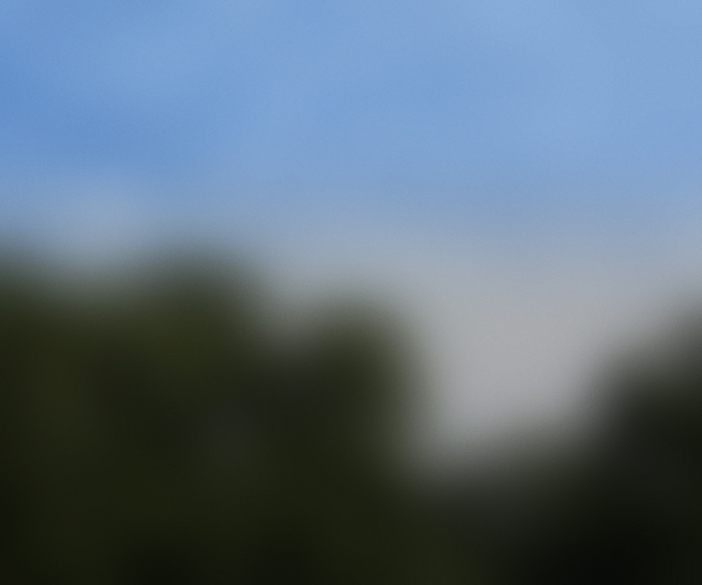 Blurred Picture Texture