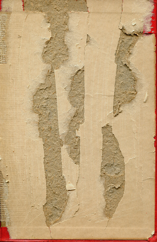 Book Interiors 9 Texture
