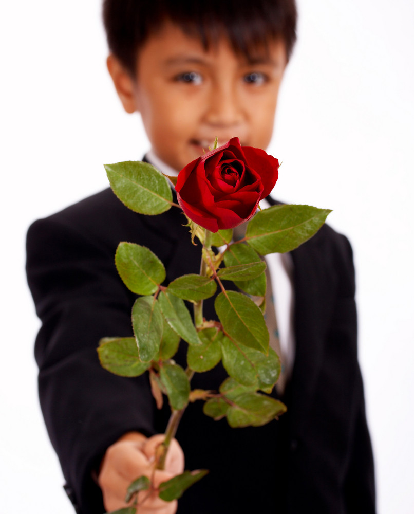 Boy Holding Up A Rose For A Girl
