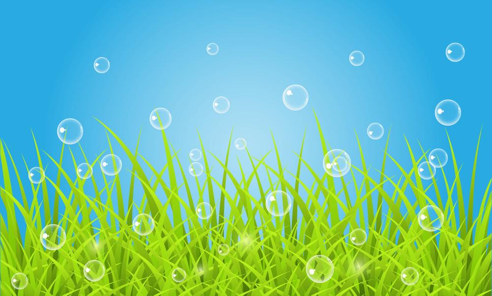 Bubbles On Grassline Background