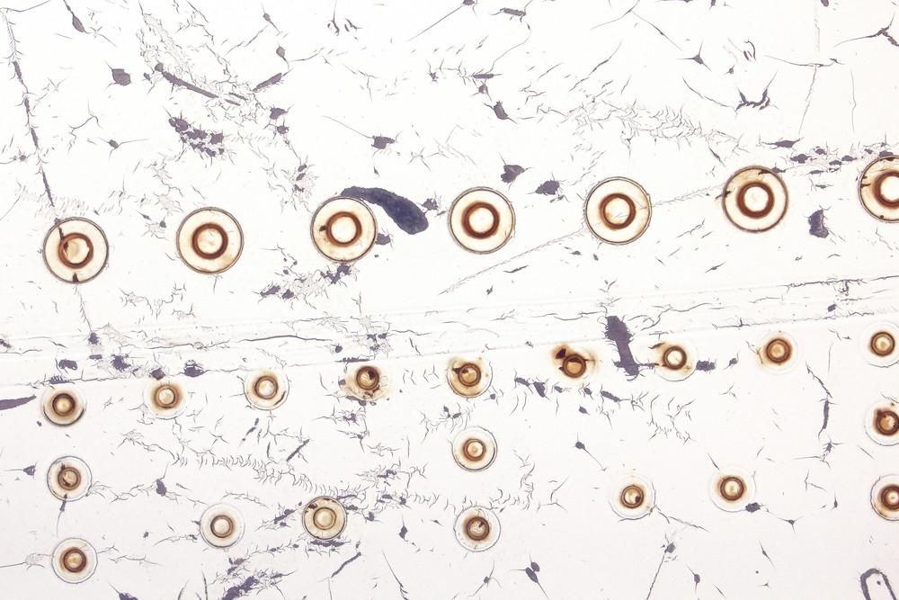 Bullet Holes Grunge Texture