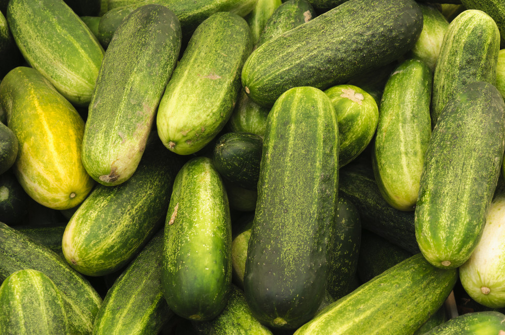 Bunch Of Cucumber
