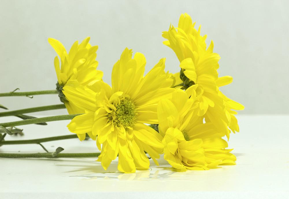 Bunch Of Flower
