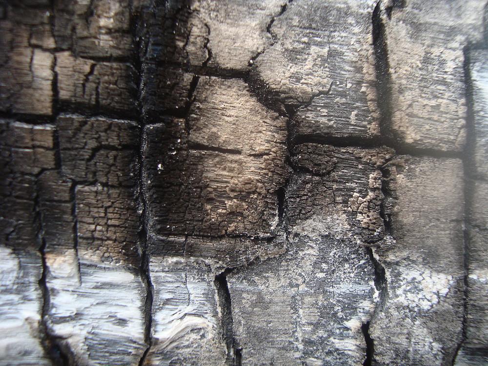 Burnt_wood_texture