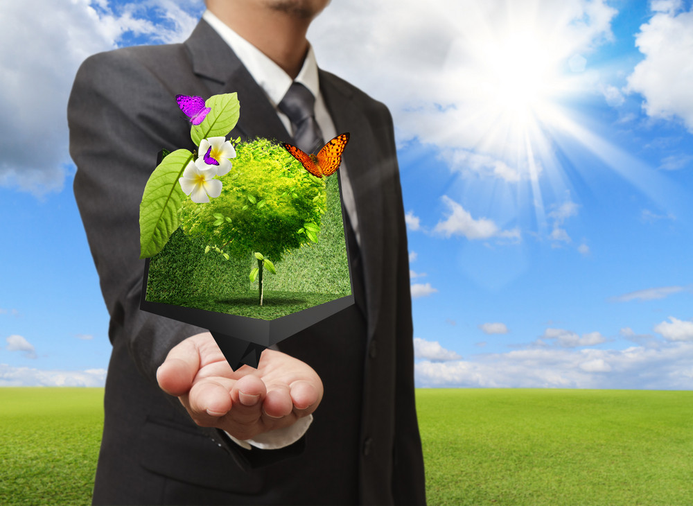 Businessman Holding A Creative Box Of Tree In His Hand With Green Meadow On The Background