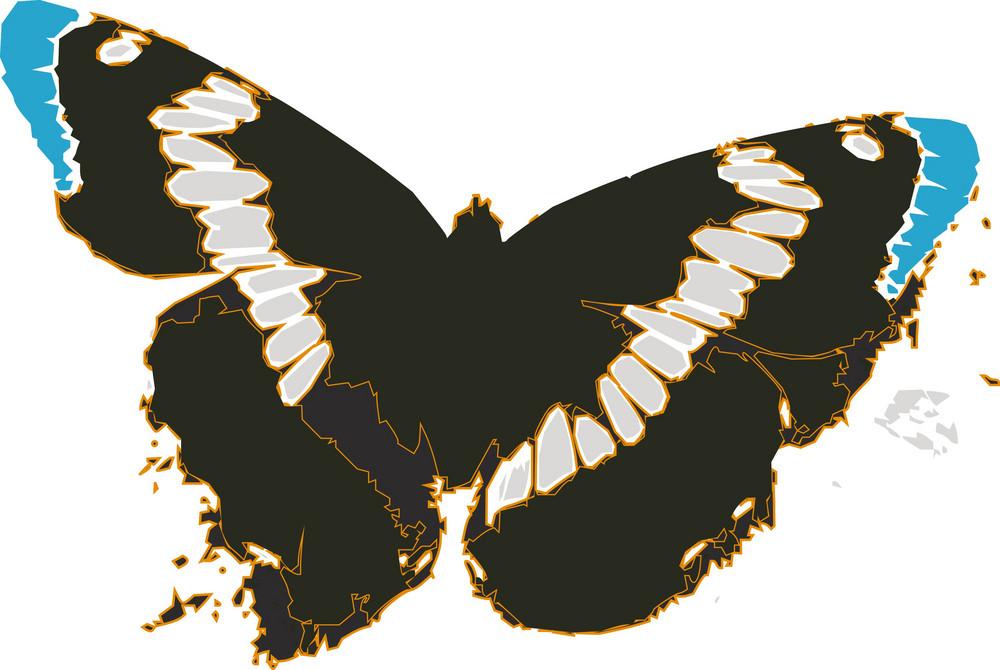 Butterflies 1 Vector