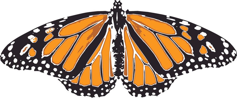 Butterflies 2 Vector
