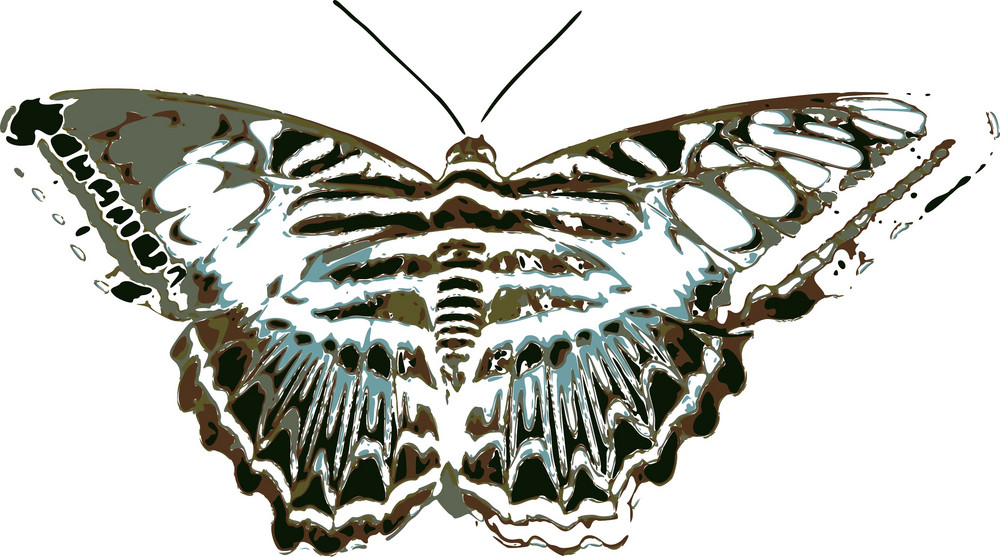 Butterflies 3 Vector