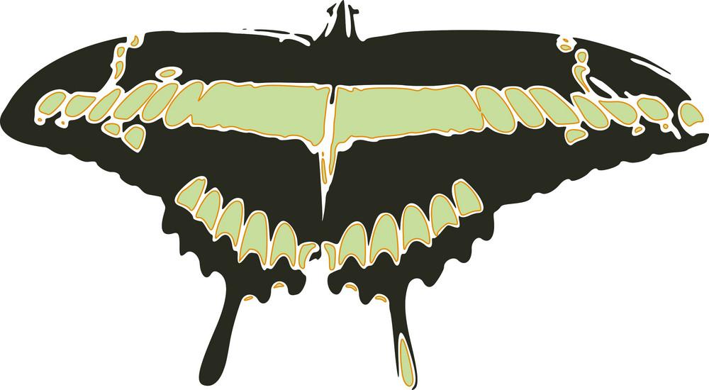 Butterflies 4 Vector