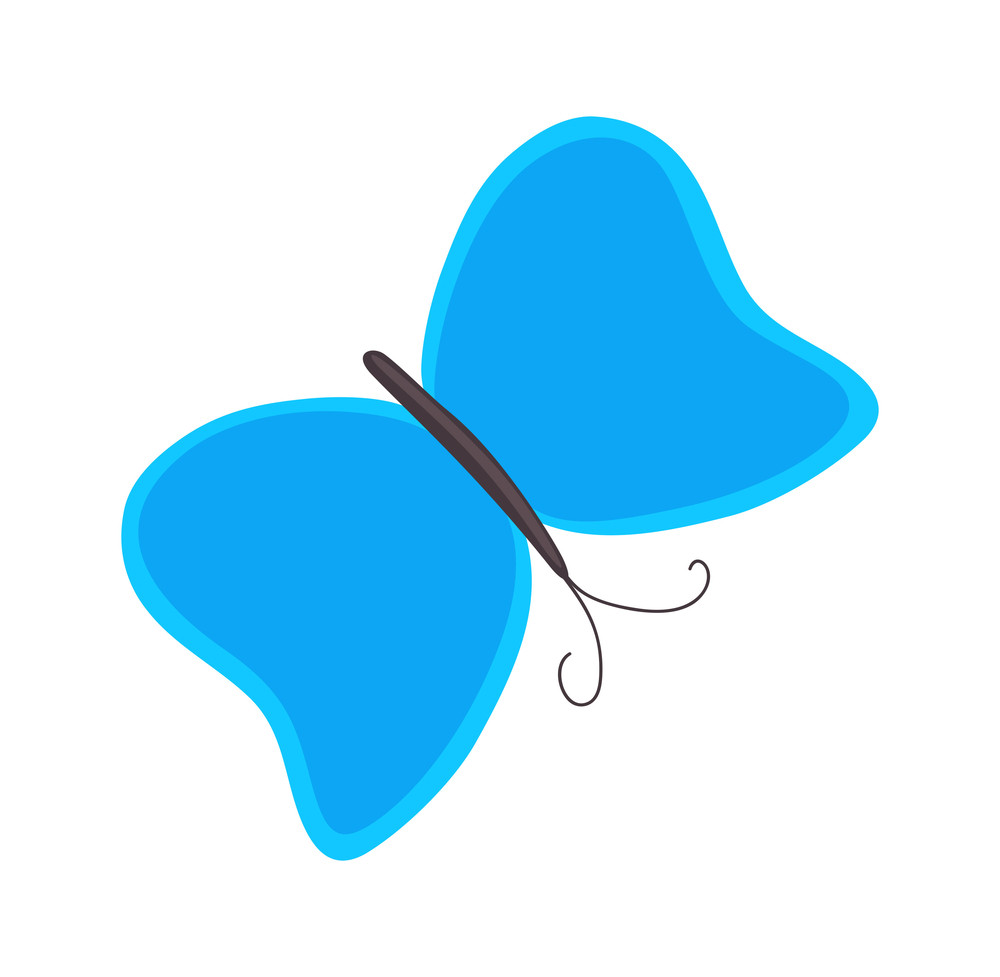 Butterfly Design Shape