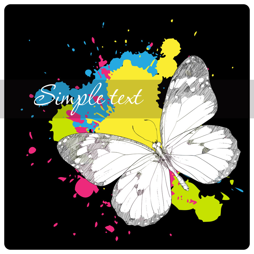 Butterfly On A Black Background With Blots. Vector Illustration.