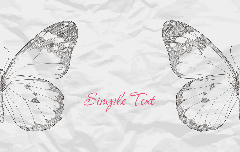 Butterfly On A Paper-backgroun. Vector Illustration.