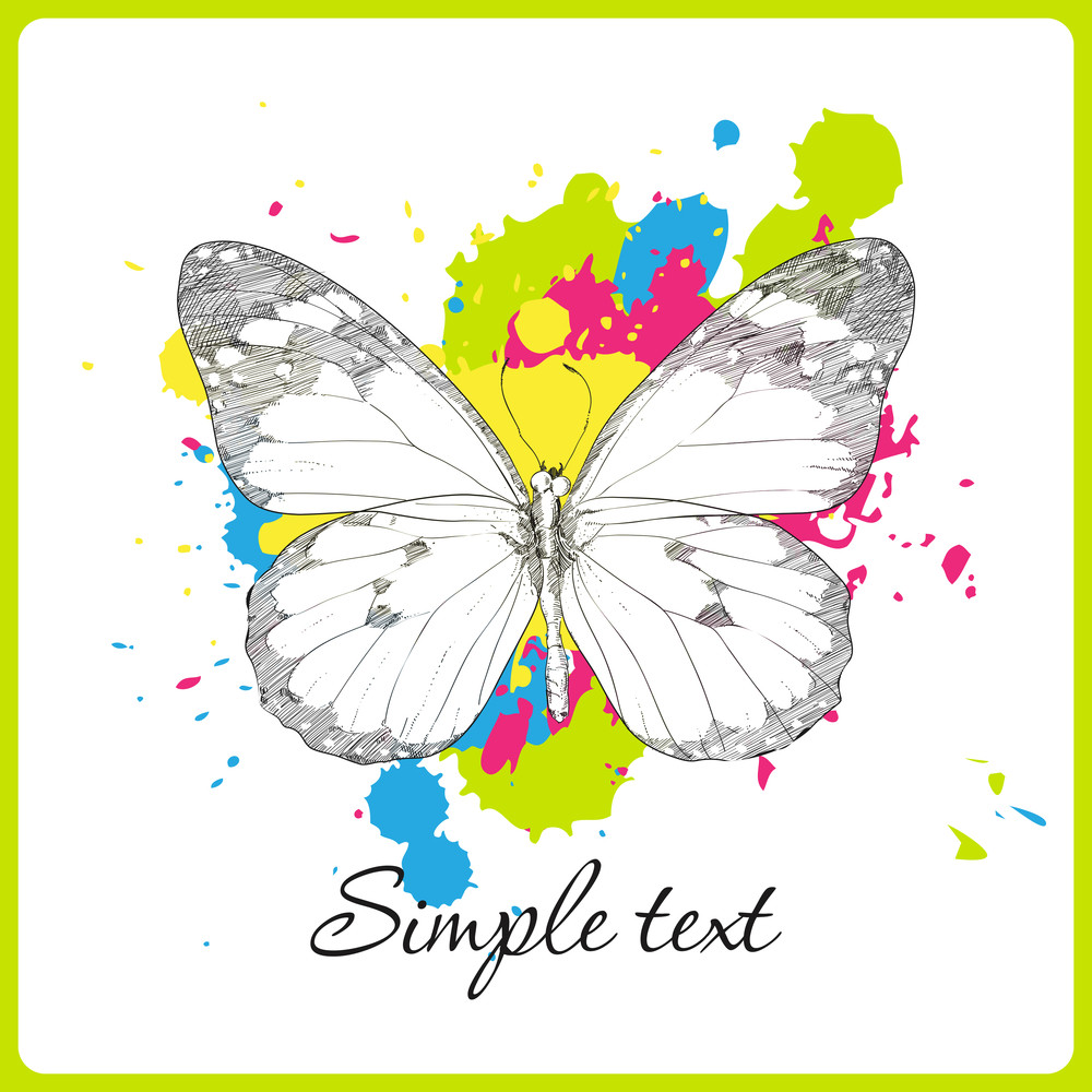 Butterfly On A Withe Background With Blots. Vector Illustration.