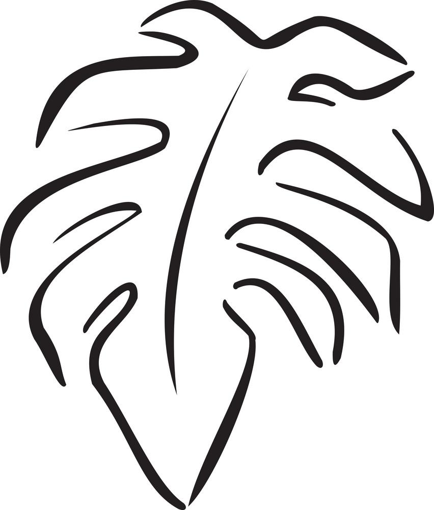 Illustration Of A Leaf.