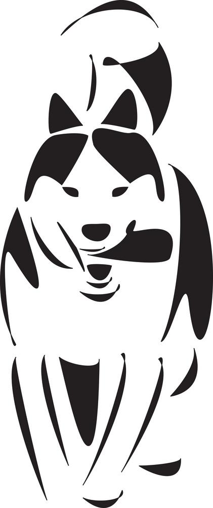 Stylish Eskimo Dog.