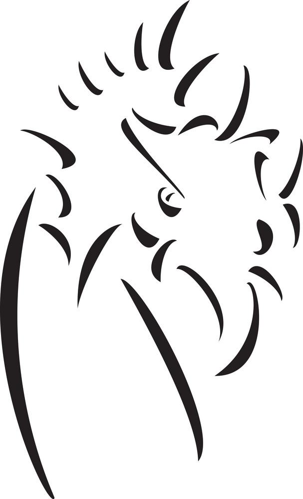 Half Illustration Of A Dragon.