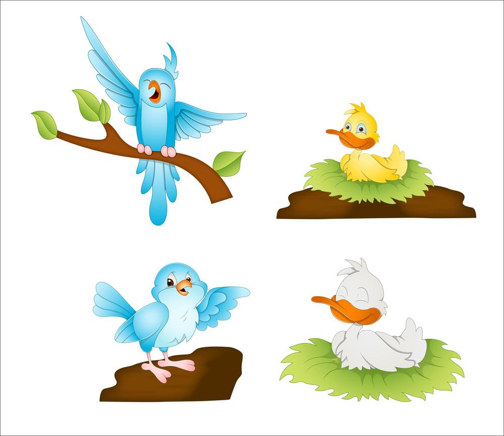 Cartoon Birds Vectors