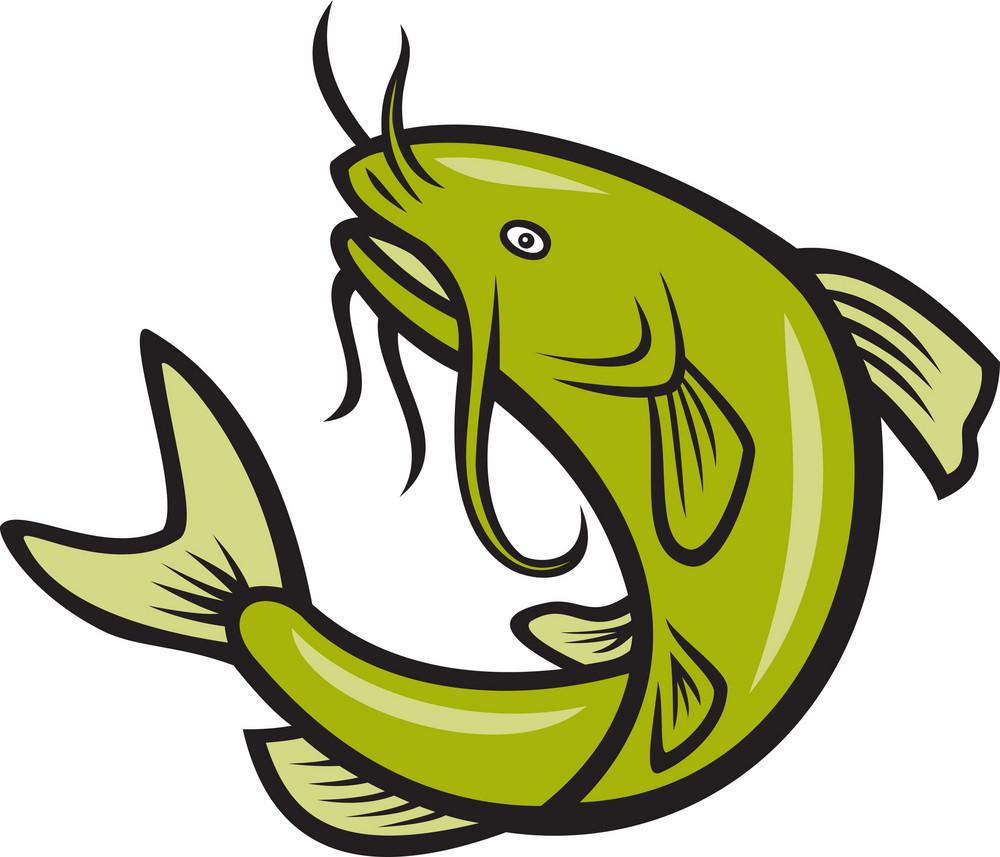 Catfish Fish Jumping Cartoon