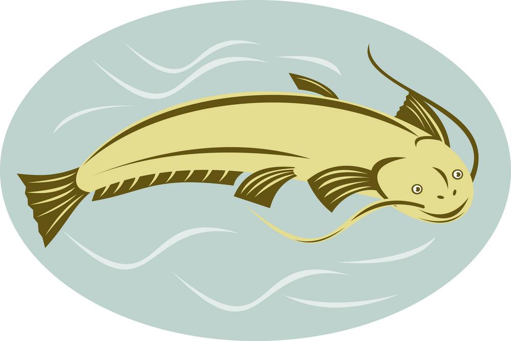 Catfish Jumping
