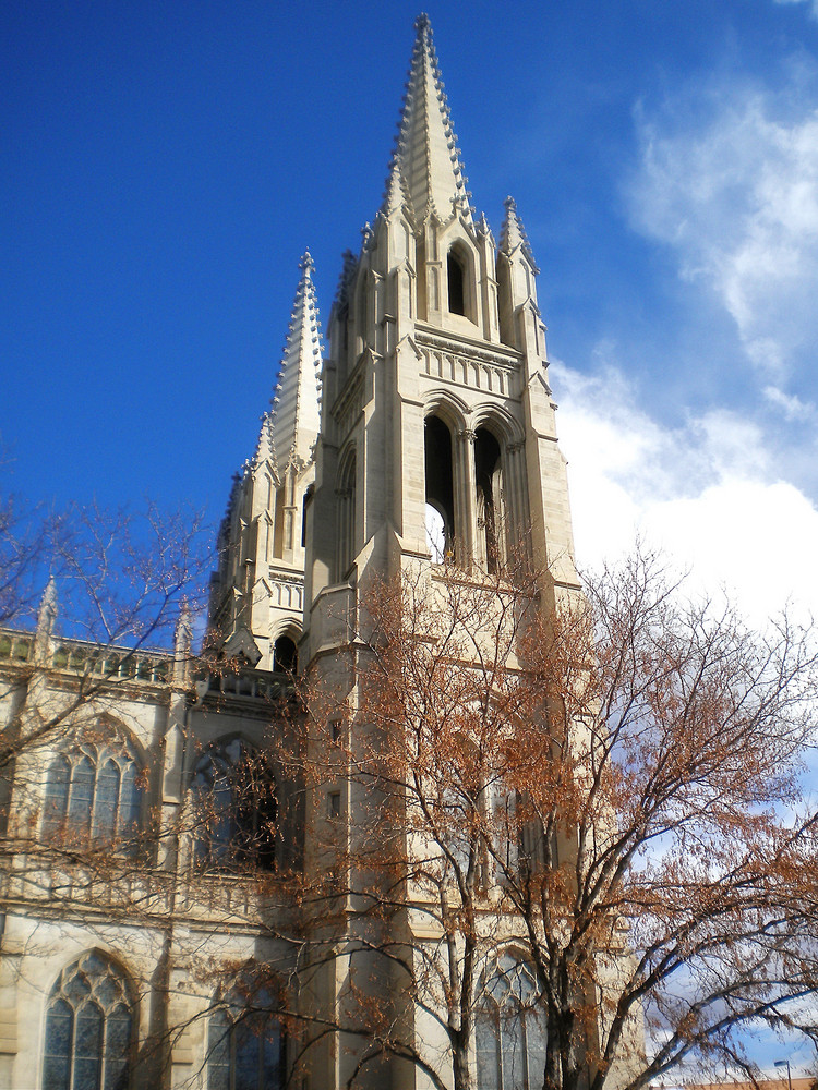 Cathedral Basilica Of The Immaculate Conception Denver